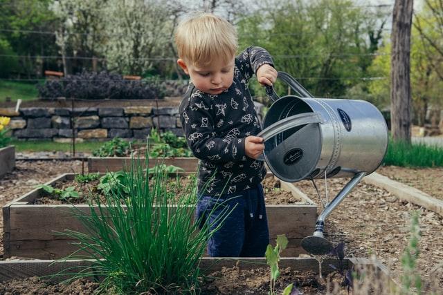outdoor activities for toddlers in winter