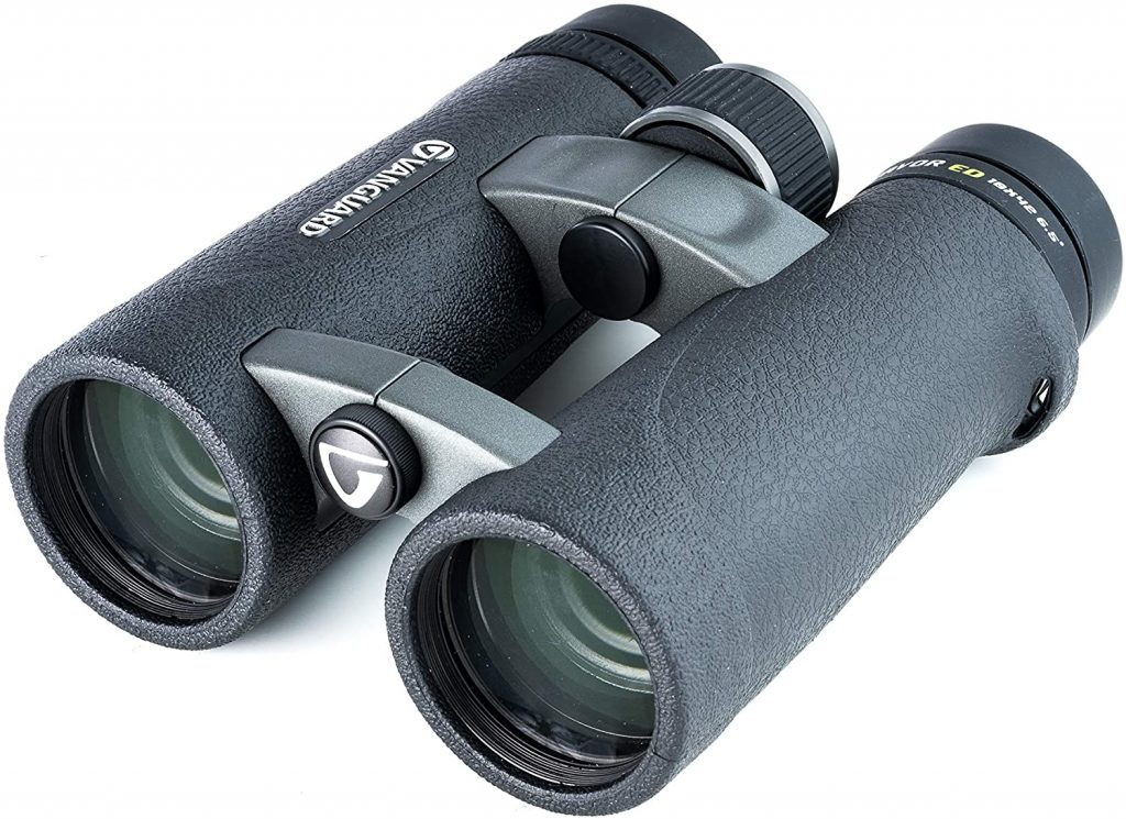 best binoculars for under 300